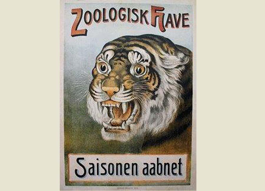 tiger onlineshop denmark